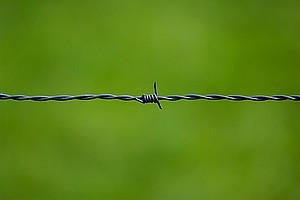 csm_barbed-wire-250822_1280_956e6279d0