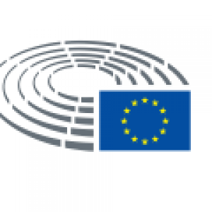 EU-Parlament als Grafik